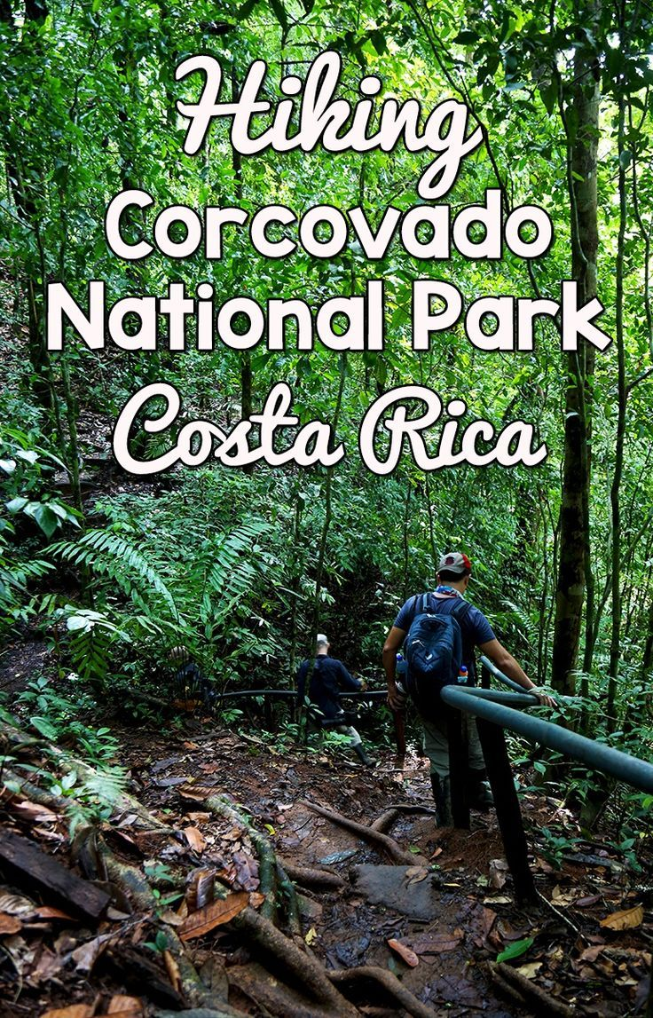 What it's like to hike the San Pedrillo and Sirena Station in Corcovado National Park for a day trip. Find out which one you should visit http://mytanfeet.com/activities/san-pedrillo-sirena-station-corcovado-national-park/