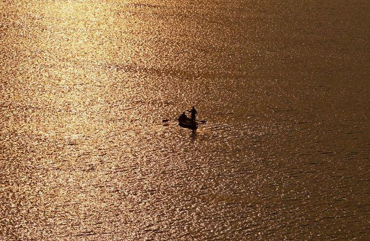 Vergoldete Wellen: Das Licht der aufgehenden Sonne spiegelt sich auf dem Wasser des Yamuna-Flusses, einem Nebenfluss des Ganges in Indien. Ein Fischer ist dort bereits mit seinem Boot unterwegs. Die Yamuna ist eine wichtige Göttin im Hinduismus (© Reuters, 19.11.2016).