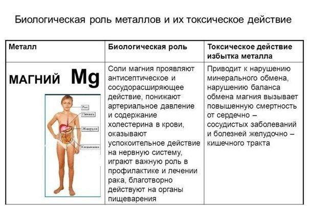 Магний и его роль в организме