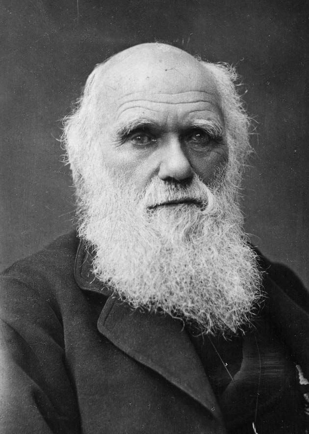 This is one of the last photographs taken of Charles Darwin, who developed the theory of evolution whereby changes in species are driven, over time, by natural and sexual selection.