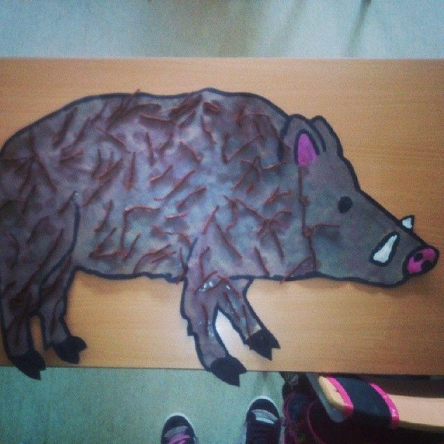 Porc senglar amb pels de llana