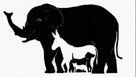 Un nuevo reto para tus ojos: a simple vista ves 5 animales, es lógico, pero debes ser muy observador y encontrar a otro grupo tan importante como divertido....