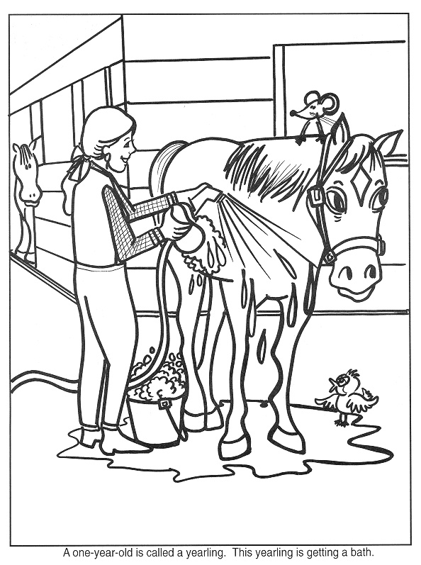 preschool horse coloring pages - photo#19