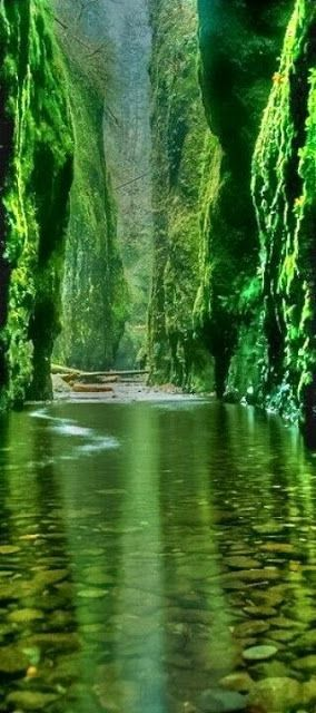 Emerald Gorge -Columbia River- Oregon