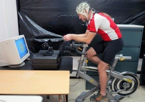 ' Psychologists have designed an experiment to investigate whether human vision is more sensitive during physical activity. The researchers found that low-intensity exercise boosted activation in the visual cortex, the part of the cerebral cortex that plays an important role in processing visual information. Their results appear in the Journal of Cognitive Neuroscience.'  Your brain on exercise: