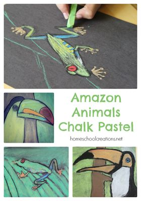 Amazon Animals Chalk Pastel - uses a mix of chalk and oil pastels to create a fun art project. #art