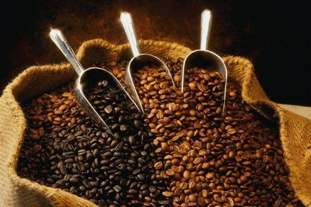 Filsafat kopi