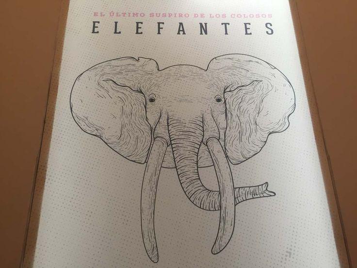 Presenta Mupal una colección de elefantes en estampillas | Diario Marca
