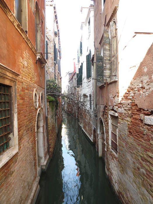 Narrow Waterways of Venice