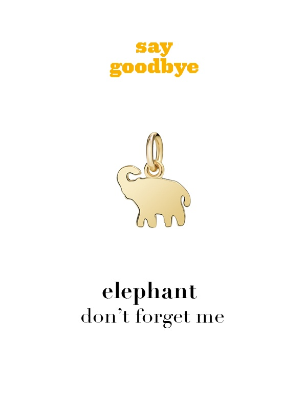 Dodo charm: elephant - don't forget me