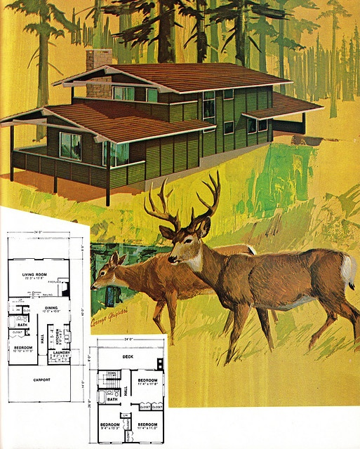 Vacation Home 4 with Plans by sandiv999, via Flickr