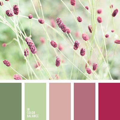 color frambuesa, color verde hierba, color verde menta, de color verde lechuga, paleta de colores tranquilos, rosado, rosado pálido y verde, rosado polvoriento, rosado y rosado polvoriento, tonos pastel de color verde, tonos rosados, tonos verdes, verde polvoriento, verde y rosado.