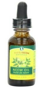 Neem is a widely popular plant for its great benefits for human health and beauty. The tree is grown throughout India and other parts of Asia. The neem oil, extracted from the leaves and fruits of the plant, is a multipurpose substance with exceptional qualities in curing various skin conditions.