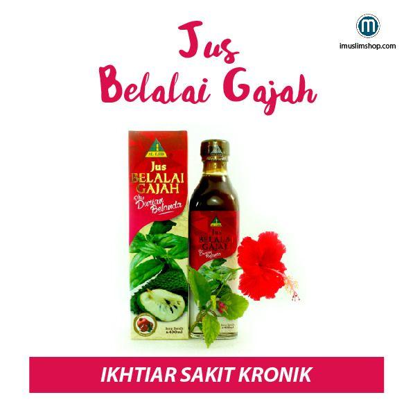 ✔Membantu pesakit kanser ✔Whatsapp 0199858025 =) http://www.imuslimshop.com/product/jus-belalai-gajah-al-ejib/ #jusbelalaigajah #AlEjib #imuslimshop