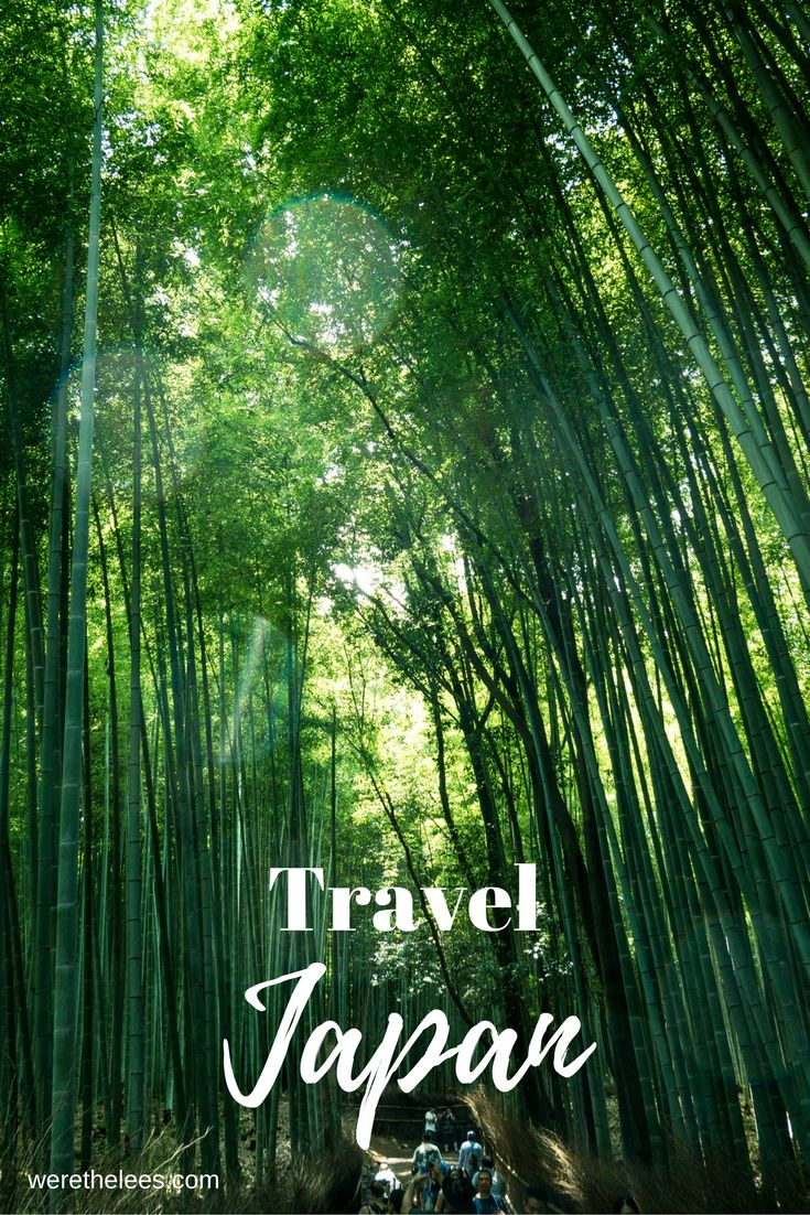 Travel Japan | World Trip | Bucketlist | Nature  Park Vacation