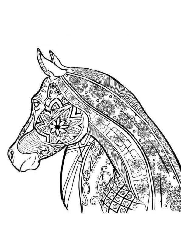 Coloring Page Animals For Teens And Adults Dieren Voor Volwassenen Horse Coloring Pages Animal Coloring Pages Coloring Pictures Of Animals