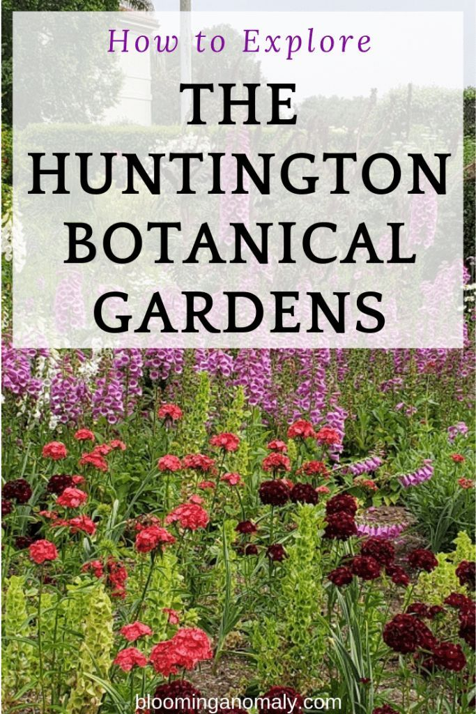 Do You Want To Visit 16 Gardens In One Place You Can Do This At