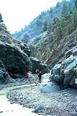 La Palma Aktuell Wandern in der Caldera