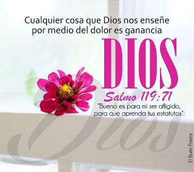 YO SOY EL BUEN PASTOR: SALMO 119
