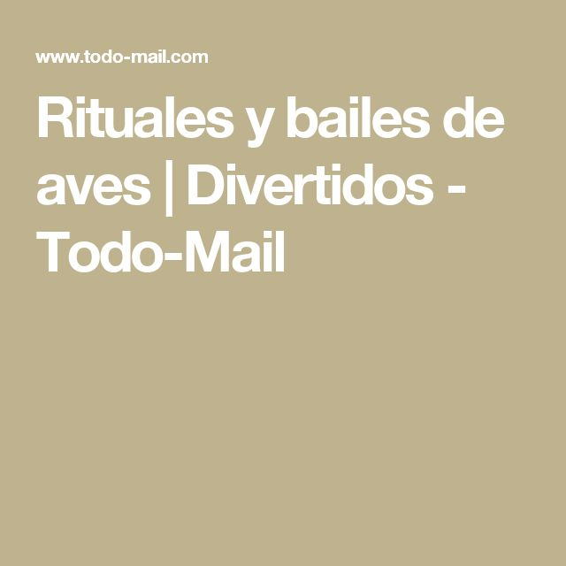 Rituales y bailes de aves | Divertidos - Todo-Mail