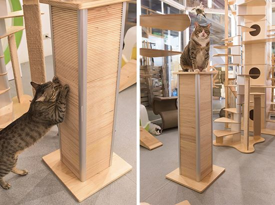 catscraper tower from catswall gives cats something to sink their claws into - Cat Scratchers