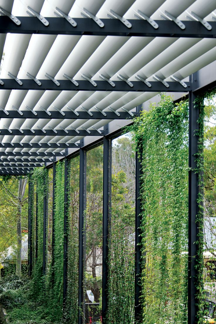 Our Lady of Mercy College Green Wall by Ronstan Tensile Architecture. On the eastern facade green walls were used in conjunction with overhead aluminium louvres to provide shade and natural ventilation to the building interior. The 470 square metre green wall cable trellis has become a major feature of the campus and is enjoyed by the whole school community.