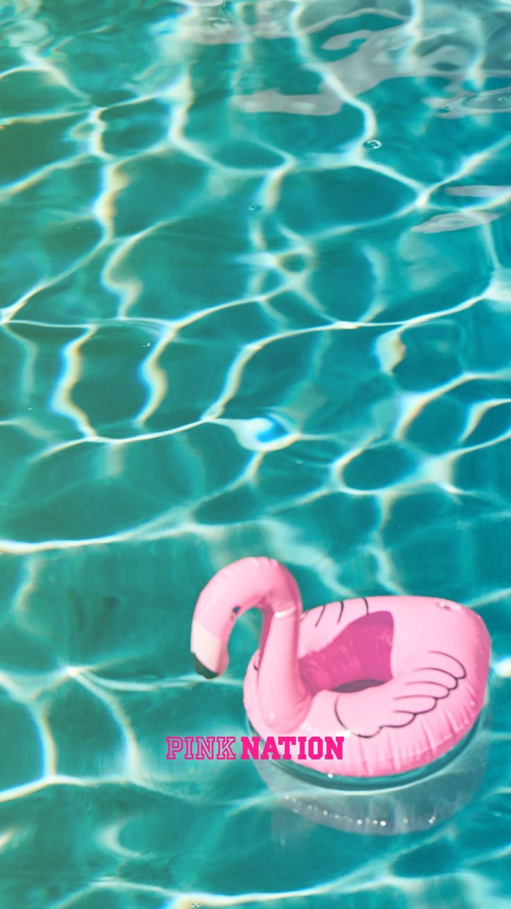 Victoria's Secret pink wallpaper iPhone background nation 2018 spring break flamingo pool vibes water