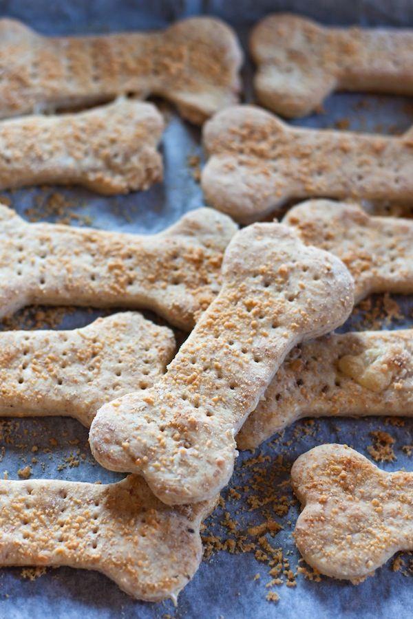 Biscotti per cani fatti in casa - Dog Coach