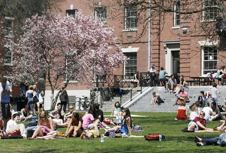 50 things i learned in college
