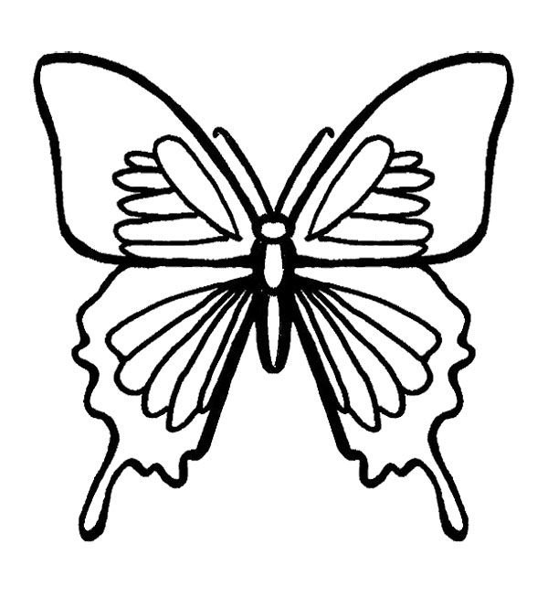 Luxury Butterfly Coloring Page 52 Butterfly Black And Ferocious