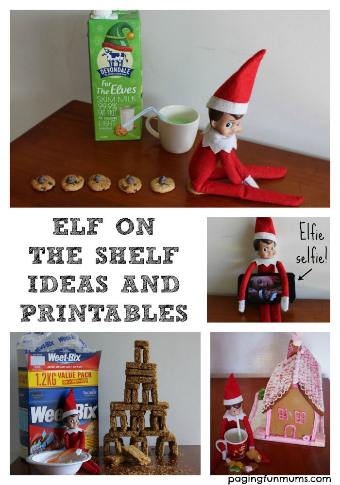 1000 images about elf on the shelf ideas on pinterest for Elf on the shelf pooping on cookies