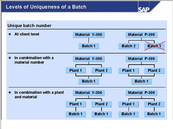 Batch Management - ERP Operations - SCN Wiki