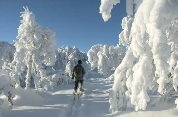 Winter at Geilo, Norway cross country skiing