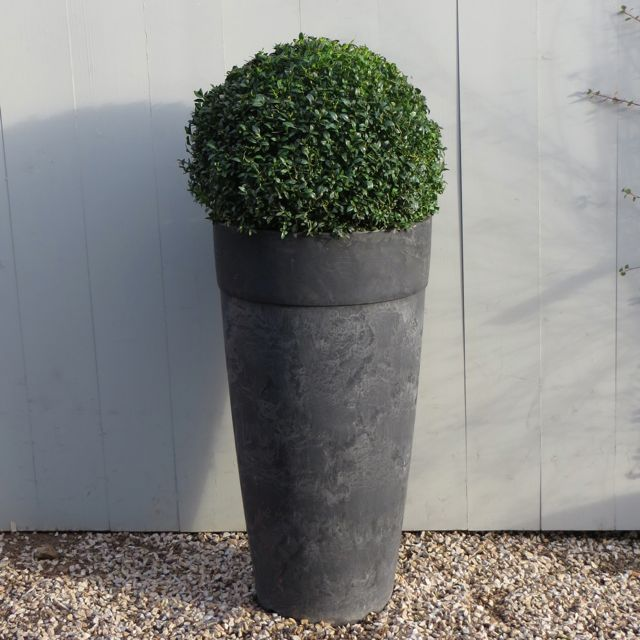 Tall Artstone Planter With Buxus Ball