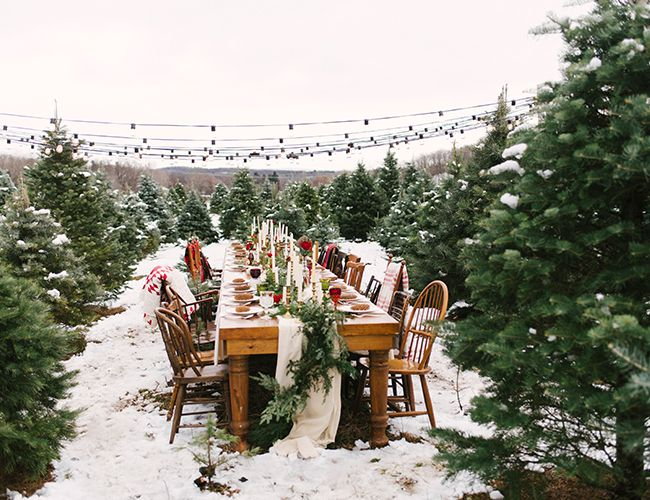 Christmas Tree Farm Wedding Inspiration Inspired By This Outdoor Winter Wedding Farm Wedding Tree Farms