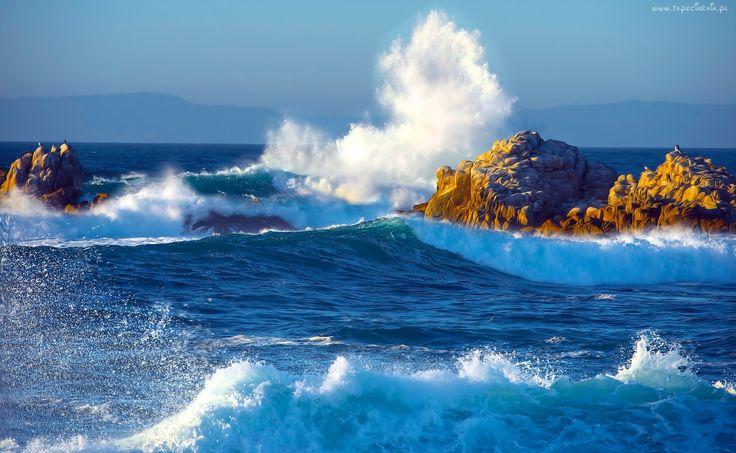 Morze, Skały, Fale