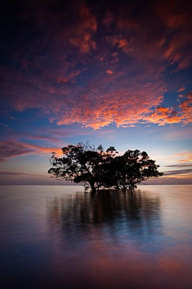 Magical mysteries of life...Sunrise in Nudgee Beach, Queensland, Australia