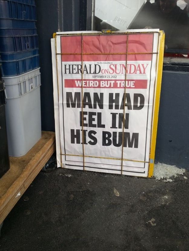 oh my god so funny, and it probably was the main headline ! lol , we just laugh and say no news tonight then !