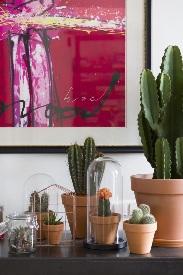 Cactus collection | Styling Leonie Mooren | Photography Anouk de Kleermaeker | vtwonen August 2015
