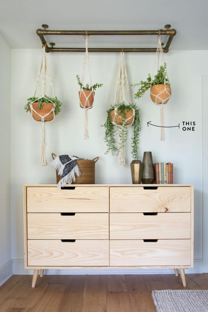 "A fun name for a fun succulent. If you're going for a more modern look, the ""String of Bananas"" is the plant for you. Hanging these on hooks in your ceiling is an easy way to bring a corner of your home to life—just be sure not to overwater! 