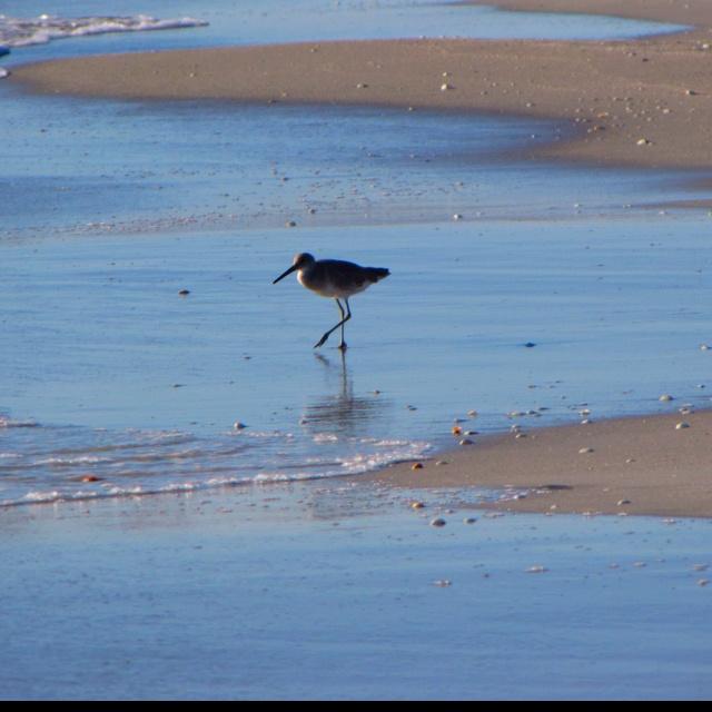 Perdido Key Fl Kayak: 66 Best The Beach Is My Life