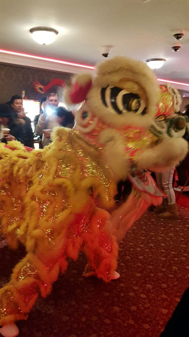 Lion Dance at Fitzpatricks Casino Parnell St. Celebrating the Chinese New Year
