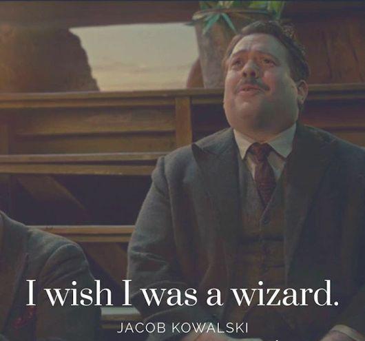 Same here, Jacob. Same here...    I wish I was a wizard   Fantastic Beasts and Where to Find Them   Jacob Kowalski   JK Rowling