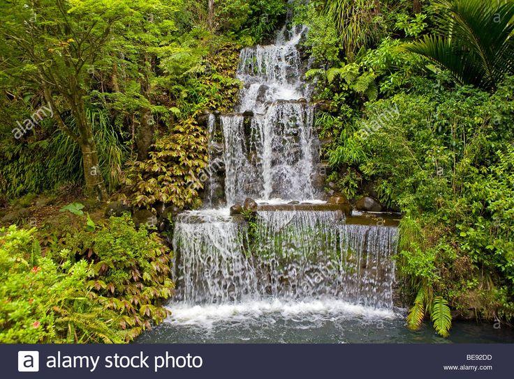 waterfall-new-zealand-north-island-taranaki-new-plymouth-pukekura-BE92DD.jpg (1300×962)