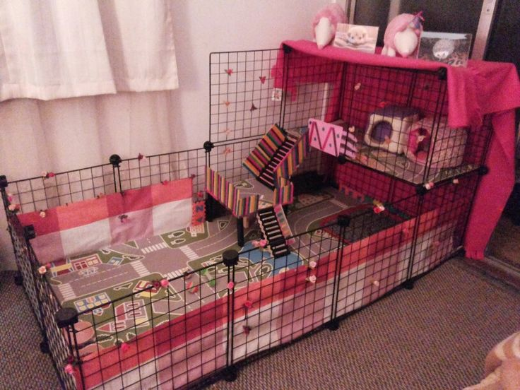 Best 25 c c cage ideas on pinterest cages for guinea for How to make a guinea pig cage