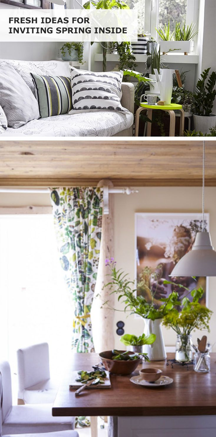 Welcome Spring Into Your Home By Growing Indoor Gardens, Adding Textiles Or  Creating Statement Features