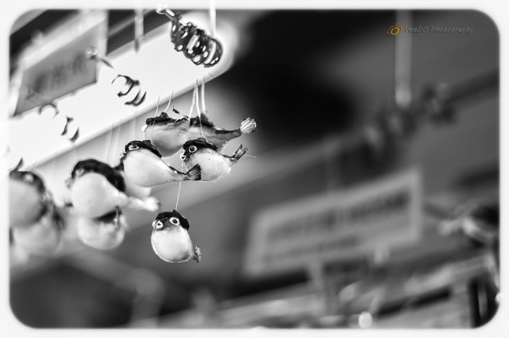 http://www.veedophotography.com/130-of-365project-the-art-of-street-photography-tai-o/