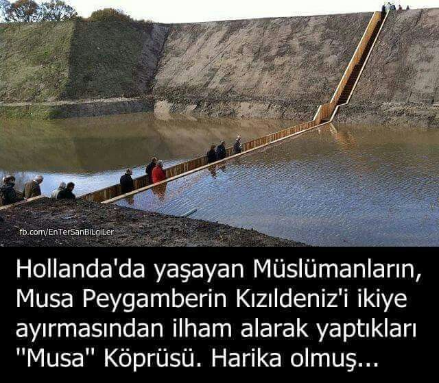 Musa köprüsü