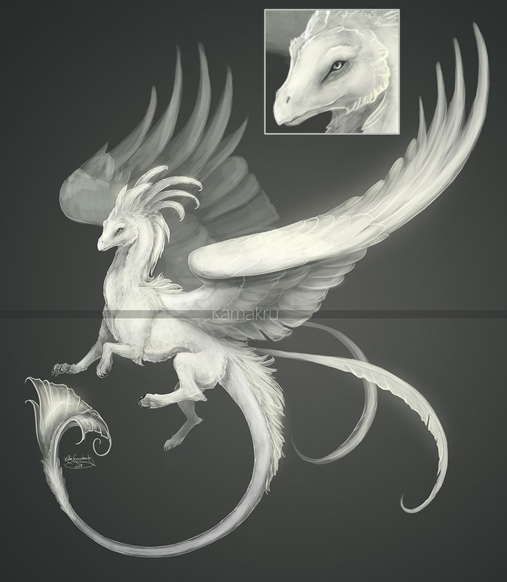 Sea Cloud Dragon design (adoptable) - CLOSED by Kamakru on DeviantArt