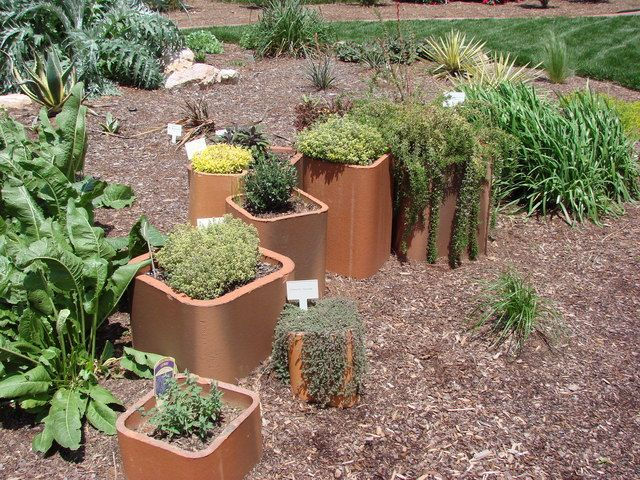 Elegant Herbs In A Garden Patch And Containers Together Make For Interest, Delight,  And Enjoyment